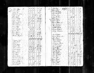 Year: 1790; Census Place: Martin, North Carolina; Series: M637; Roll: 7; Page: 441; Image: 259; Family History Library Film: 0568147